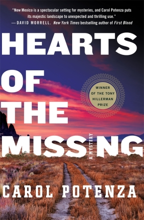 Hearts of the Missing_cover photo